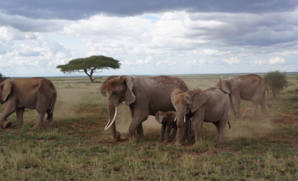 C:\Users\Adriana k\Desktop\Diversos\Fotos\Africa\2011-01-02\DSC00063.JPG