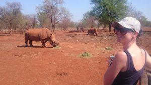 PanoramaPics-Rhino