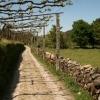 Rural path near Ponte de Lima