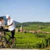 Cycling in Alsace | Visit Alsace
